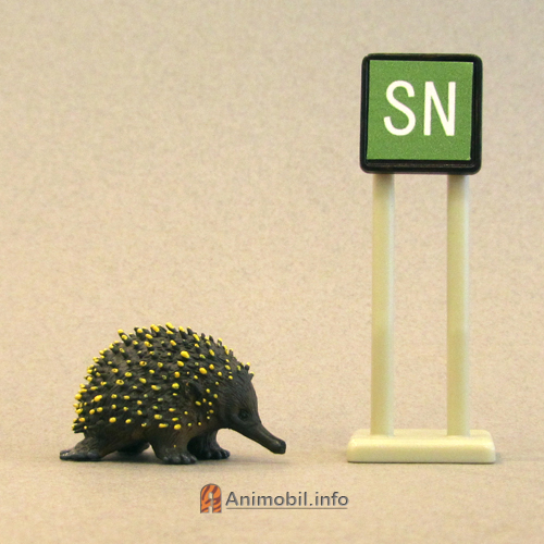Science and Nature 75484 Echidna, Small.jpg
