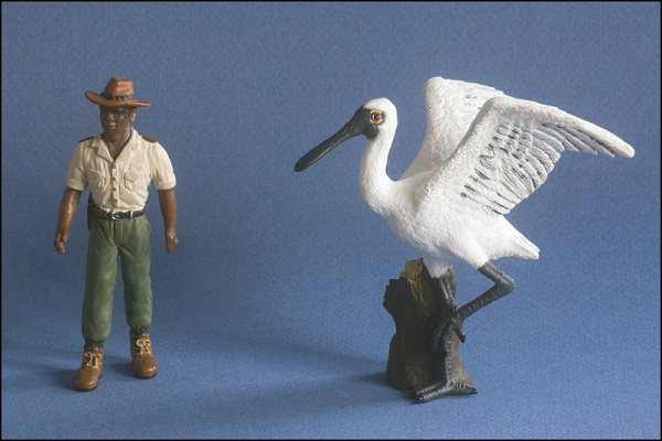 CollectA 88396 Black-Faced Spoonbill.jpg