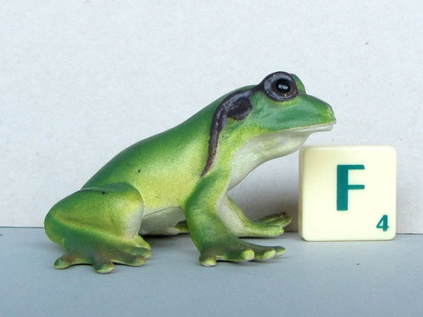 AAA frogs medium lifecycle frog.JPG