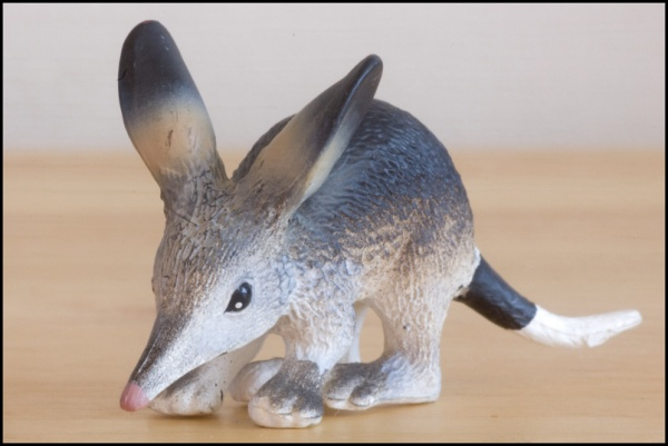 Science & Nature 75370 Bilby.jpg